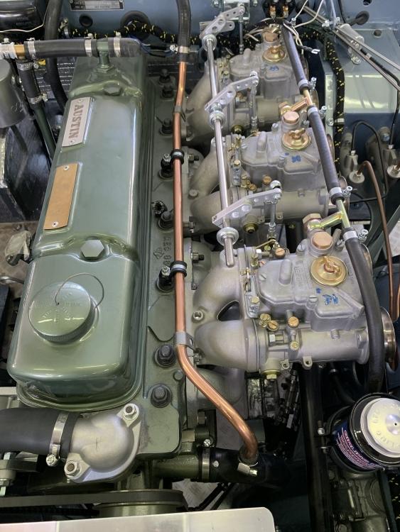 E67D3959-A736-4C8C-B7BA-9487B86B2677.jpeg